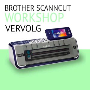 workshop-scanncut-vervolg