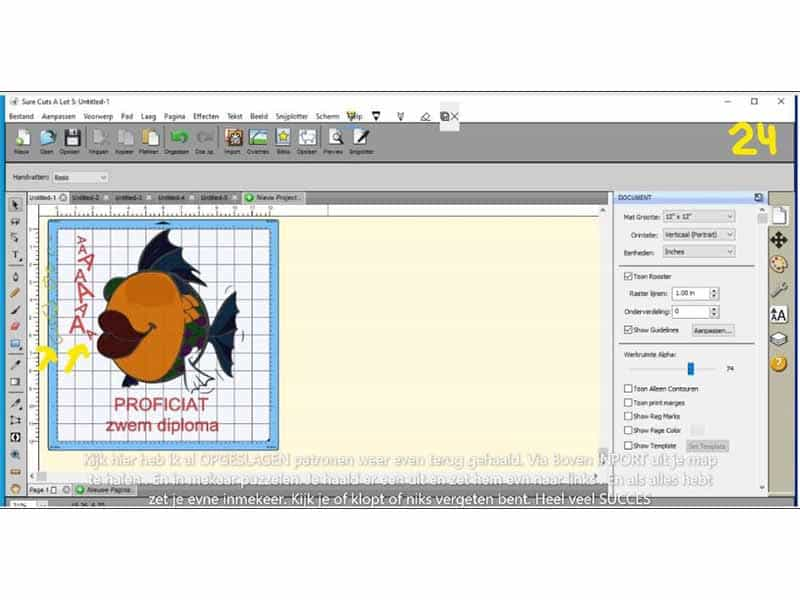 Flex-vis-maken_0022_Knipsel 24